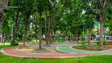 Clean City Park With Shady Trees