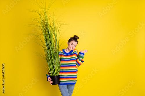 Obraz na plátne Photo of pretty brown bun haired girl wear jeans rainbow sweater hold plant sorr