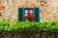 A Window With Green Shutters On A Old Brick Wall With Red Flowers And Grapevines Growning Underneath Glows In The Sunshine During A Summer Day In The Tuscany Region Of Italy.