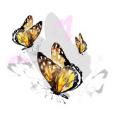 Fototapeta Motyle - yellow butterfly,watercolor, isolated on a white