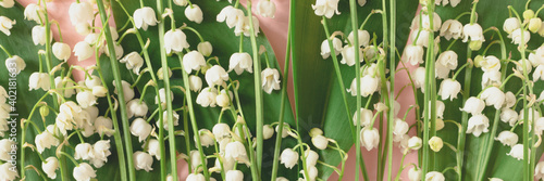 Header with lily of the valley flowers texture on a pink background Fototapeta