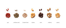 Group Of Seeds And Dried Fruits On The White Background. Goji, Sunflower Seed, Pumpkin Seed, Cashew, Raisin, Mulberry, Peanut.