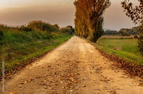 Fotografering camino