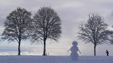 Schneemann Und Bäume Mit Langläufer