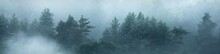 Gauja River Valley And Evergreen Pine Forest In A Clouds Of Thick Mysterious Fog At Sunrise. Sigulda, Latvia. Breathtaking Panoramic Aerial View. Pure Nature, Environmental Conservation, Ecotourism