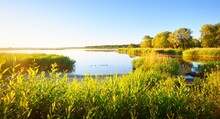 Panoramic View Of The Lake With A Green Forest In The Background. Summer Sunset. Clear Blue Sky, Soft Light, Symmetry Reflections On The Water Like Mirror. Natural Habitat For Ducks