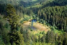 Gezoomter Blick Auf Den Ellbachsee Von Der Aussichtsplattform Ellbachseeblick Bei Freudenstadt Im Schwarzwald, Deutschland