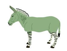 Zonkey Vector Illustration Isolated On White Background. Zebra  Donkey Symbol. Zorse Or Zebrula Or Zonkie.