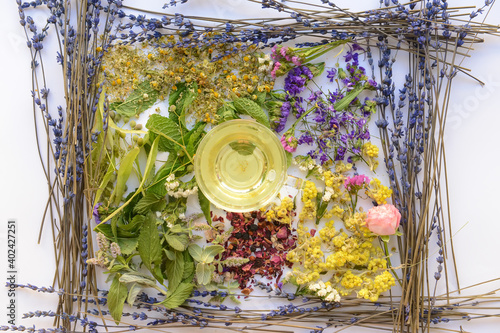 Obraz Cup with floral tea and dry flowers on light background - fototapety do salonu