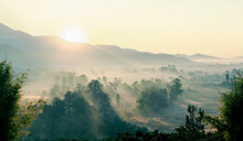 The Beautiful Panorama Landscape Of The Tree In The Rice Fields, The Sun's Rays Through At The Top Of The Hill And The Moving Fog Over The Tree, Chiang Rai Northern  Thailand.