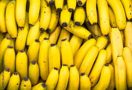 Photo Fundo com muitas bananas maduras