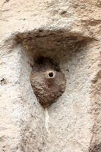 Empty Swallow Nest On The Rock