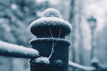 Spiderweb On A Fence Covered\with Frost