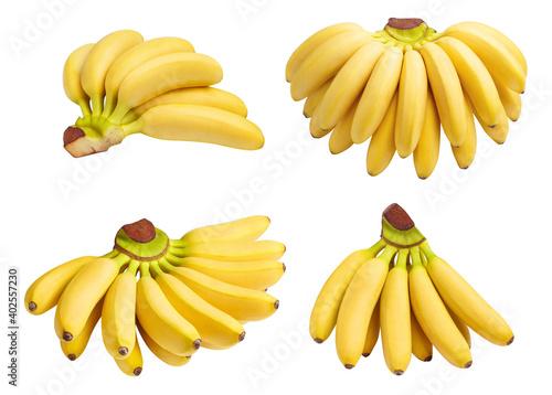 Obraz na plátně Baby bananas bunches set, isolated on white background