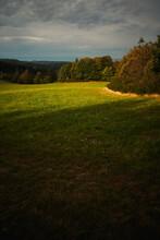 Frisch Gemähte Wiese Am Waldrand Während In Goldenem Sonnenlicht