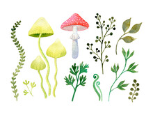Watercolor Set Of Magic Mushrooms And Green Leaves Isolated On A White Background. Hand Drawn Illustration. Wild Forest Clip Art: Grass, Fly Agaric, Branches, Botanical Decorative Elements