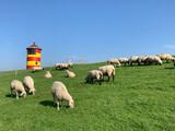 Fototapeta Na ścianę - Leuchtturm in Norddeutschland