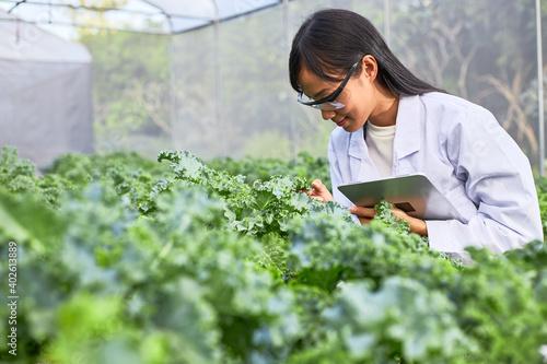 The female botanist is working in greenhouses full of plants. Wallpaper Mural
