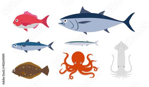 Obraz na plátne 魚 セット