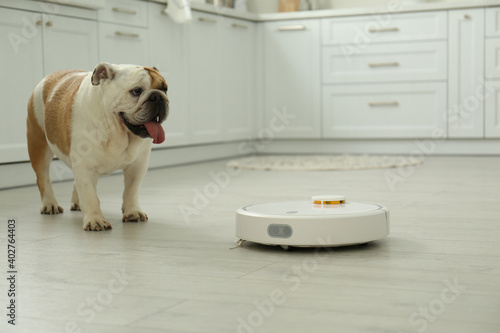 Obraz Robotic vacuum cleaner and adorable dog on floor in kitchen - fototapety do salonu