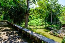 Natural Park In Nan Province