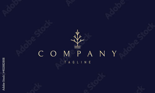 Vector golden logo on which an abstract image of a minimalistic fir tree in a linear style Fotobehang