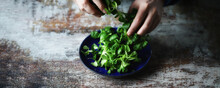 Selective Focus. Male Hands Are Holding Fresh Green Salad. Mash Salad