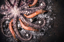 Still Life Close Up Of Tentacles Of Raw Octopus And Shrimp Lying On Cold Metal Surface