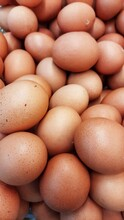 Potrait Of Brown Eggs In The Market Captured From High Angle