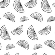 Hand Drawn Citrus Seamless Pattern. Vector Illustration In Sketch Style