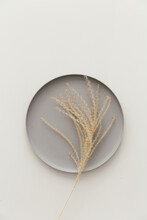 Golden Colored Dried Grain On A Grey Plate Against A Neutral Light Grey Background.