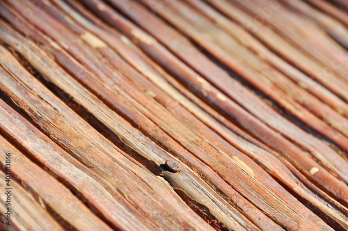 Wooden shingles diagonally with a rusty nail Poster Mural XXL