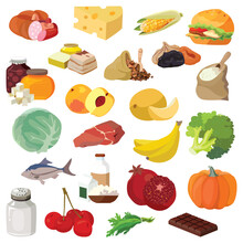 Fruits, Vegetables, Fats, Meat, Cereals, Dairy Products