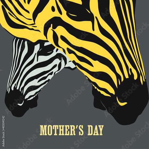 Graphical poster with with the heads of a large zebra female and her cub closeup on gray background, vector illustration in pop art collage style. Mother day card