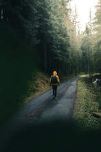 A Young Guy Wandering Into The Woods. Young Roamer. Lifestyle Photography In The Deep Green Forest With Yellow Jacket
