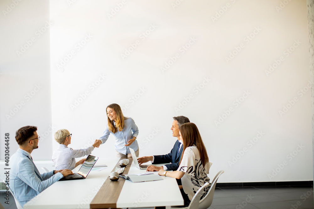 Fototapeta Group of business people with young adults and senior woman colleague on meeting at modern bright office interior
