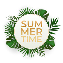 Natural Realistic Green Palm Leaf Tropical Background. Summer Time Concept. Template For Advertising, Web, Social Media And Fashion Ads. Vector Illustration EPS10