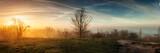 Fototapeta Londyn - sunset over the field
