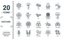 Nature Linear Icon Set. Includes Thin Line Jonquil, Anemone, Magnolia, Larch, Pansy, Tea, Lotus Flower Icons For Report, Presentation, Diagram, Web Design