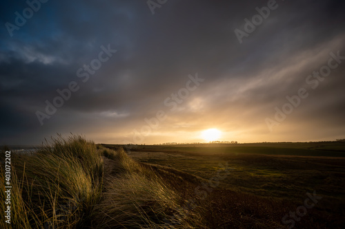 Fototapety, obrazy: Sunset in the Field and Dunes