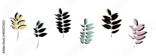 Fotografiet Grunge leaves set