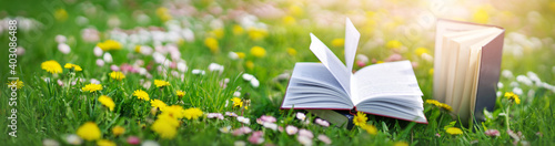 Fototapeta Open book in the grass on the field on sunny day obraz