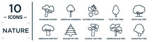 Nature Linear Icon Set. Includes Thin Line Shagbark Hickory Tree, Eastern Cottonwood Tree, White Oak Tree, Balsam Fir American Elm Sassafras American Chestnut Icons For Report, Presentation,