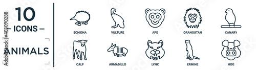 Obraz na plátně animals linear icon set