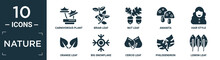 Filled Nature Icon Set. Contain Flat Carnivorous Plant, Briar Leaf, Nut Leaf, Amanita, Hair Style, Orange Leaf, Big Snowflake, Cercis Philodendron, Lemon Icons In Editable Format..