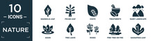 Filled Nature Icon Set. Contain Flat Magnolia Leaf, Pecan Leaf, Ovate, Treatments, Rainy Landscape, Asian, Tree Leave, Roses, Pine Tree On Fire, Sassafras Leaf Icons In Editable Format..