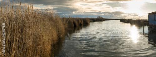 Fototapeta un canal nordé de roseaux au coucher de soleil