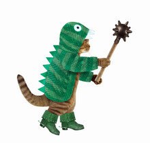 A Cat In Green Dragon Clothing And Boots Holds A Spiked Mace. White Background. Isolated.