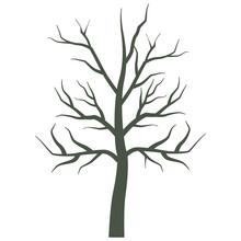 Dry Tree Plant Isolated Icon