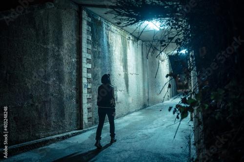 Fotografie, Obraz Lonely woman walking in a dramatic mystic dark alley at night
